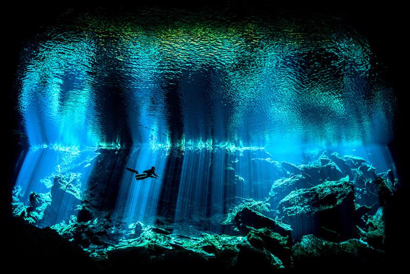 Фотографы показали необычайные красоты подводного мира