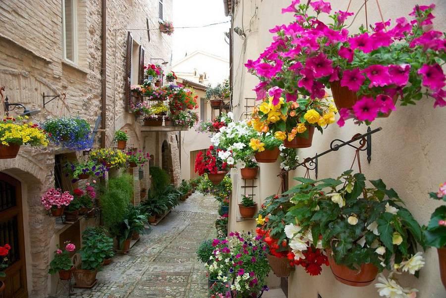 Цветущий город Спелло (Spello), Италия
