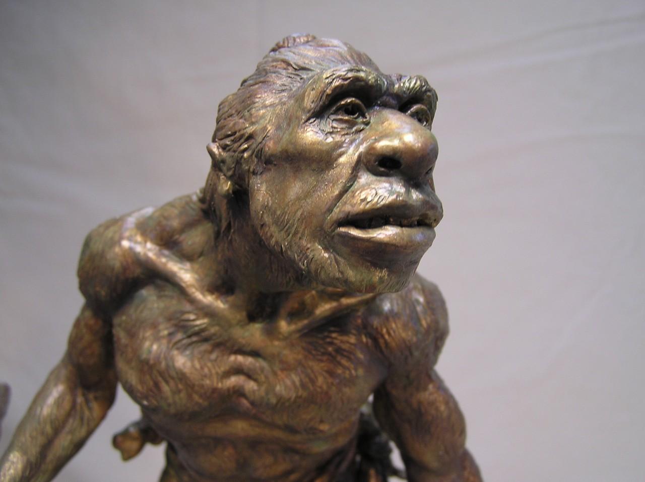 денисовцев из пещеры уэсос уличили в неандертальских корнях