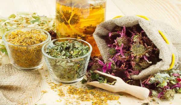 Лекарственные растения — помощники при лечении отеков