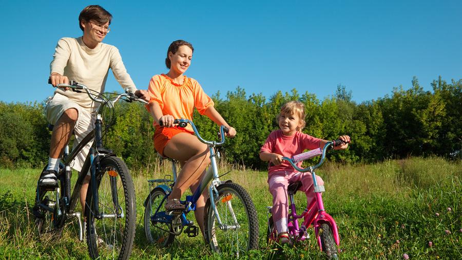 Закон велосипедиста