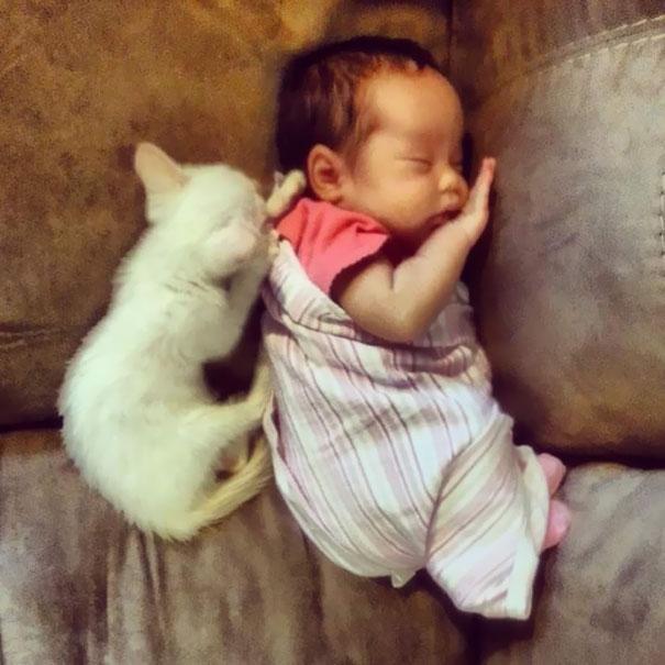 Маленькая девочка спит рядом со своей кошкой с самого первого дня знакомства