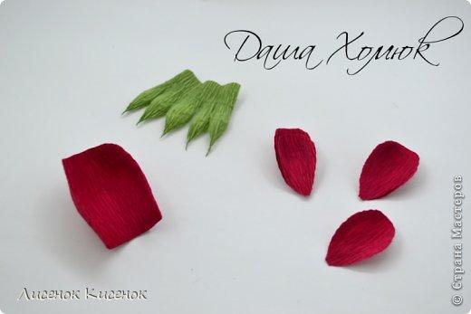 Свит-дизайн. Розы из гофрированной бумаги (10) (520x347, 69Kb)