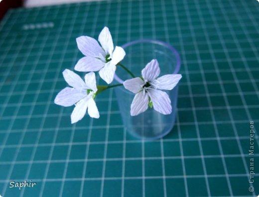 Мастер-класс Бумагопластика Маленькие цветочки из бумаги Кристал  Бумага гофрированная фото 11