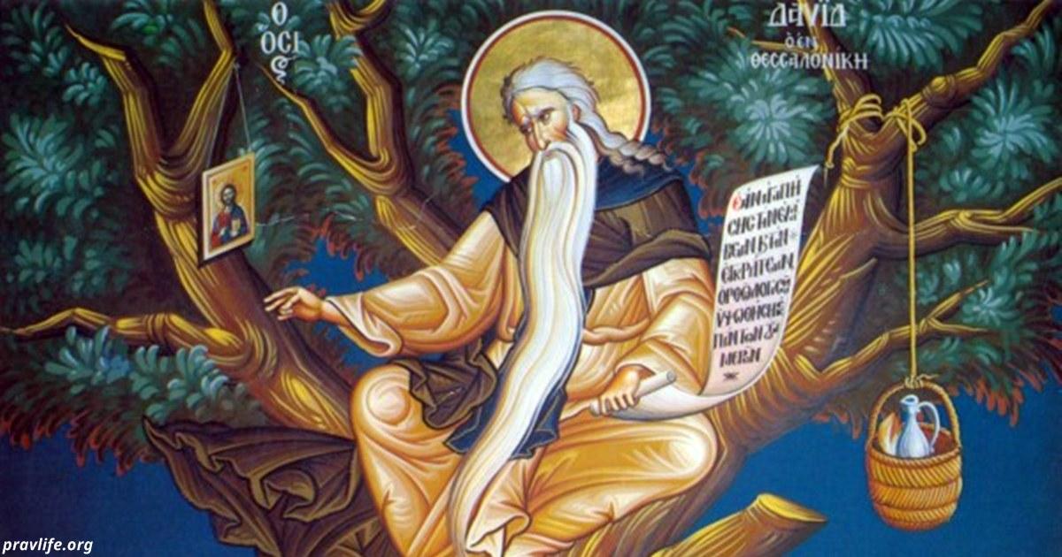 9 июля — день Давида-Земляничника. Вот что нужно знать об этом дне