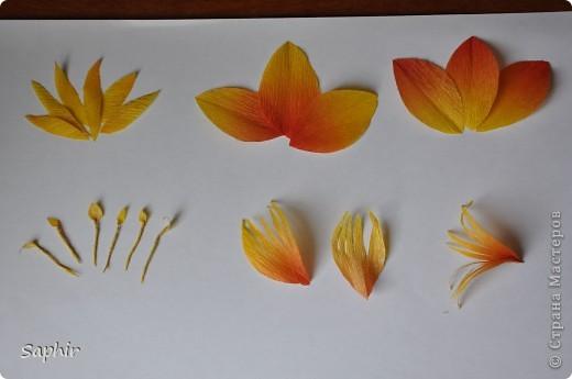 Поделка изделие Бумагопластика цветы из гофробумаги  мастер-класс Бумага гофрированная фото 5