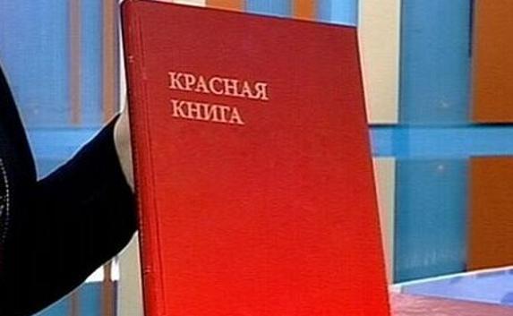 В Севастополе презентовали п…
