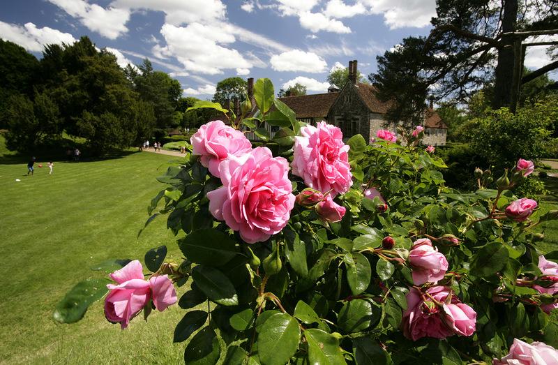 Сельская красота графства Кент, Англия