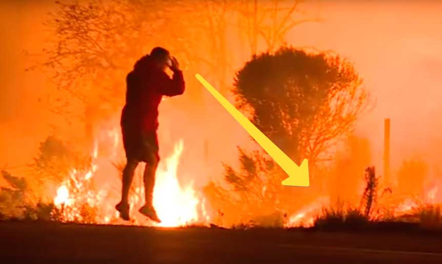 Этот неизвестный герой рисковал своей жизнь спасая дикого кролик от лесного пожара