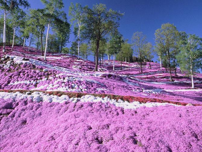 20 мест, где природа не пожалела красок