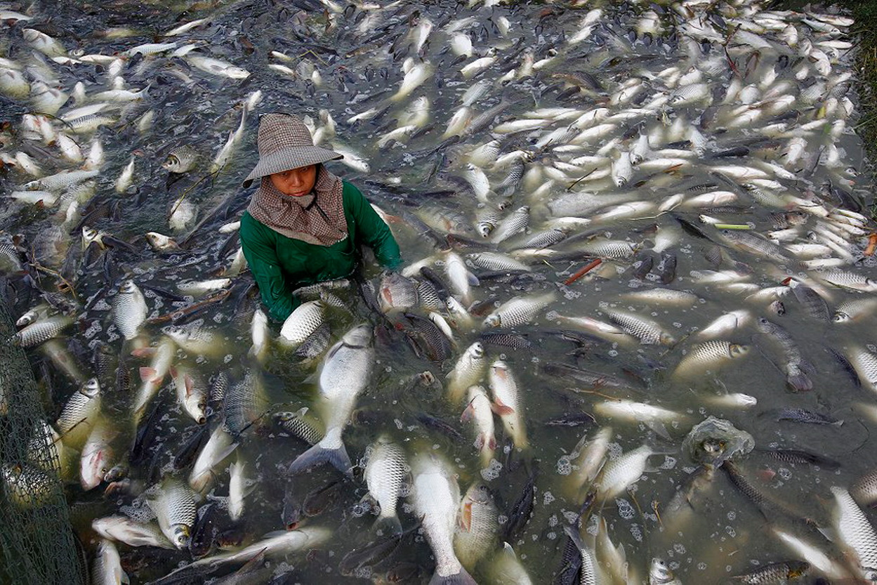 На рыбалке-рыбалка на видео 2017
