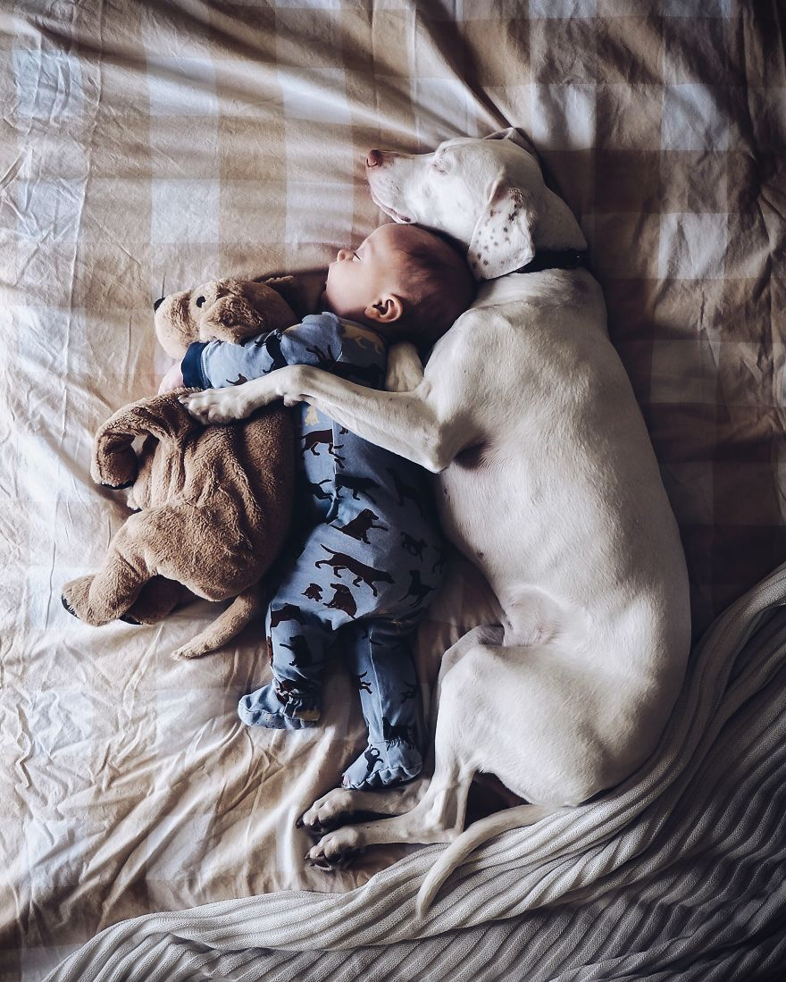 Our Rescue Puppy Is The Best Sleeping Buddy To Our 8-Month-Old Son