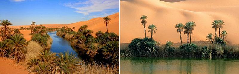 Солёные озёра Убари – удивительные оазисы посреди огромной Сахары