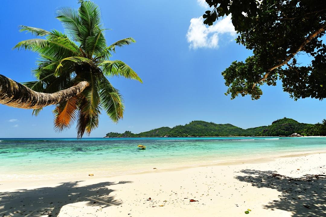 25 прекрасных фотографий о тёплых краях и песчаных пляжах