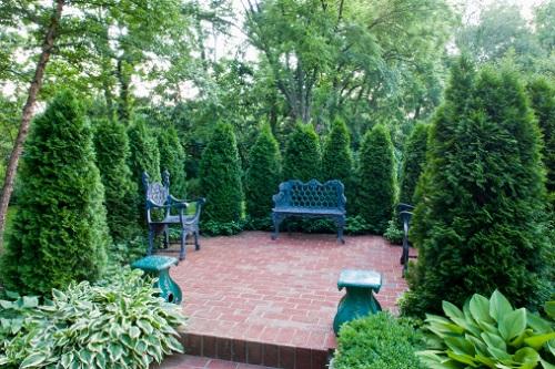 Август. Работы в саду