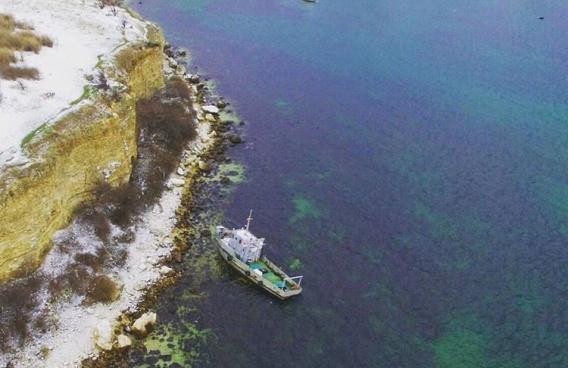 В Севастополе на берег выбро…