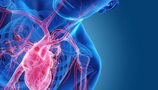 2 простых упражнения для здоровья сердца
