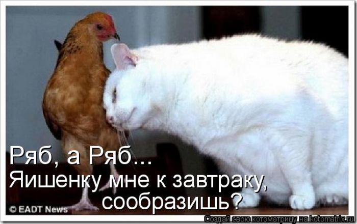 Патаму шта пятница, патаму и ПаZиТиФ! )))