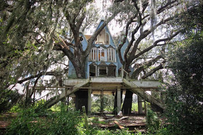 15 самых удивительных домиков на дереве