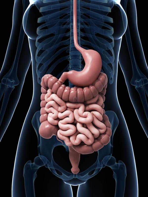 Как защититься от рака кишечника