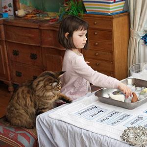 http://static.boredpanda.com/blog/wp-content/uploads/2016/02/autistic-artist-thula-therapy-cat-different-is-brilliant-iris-grace-thumb.jpg