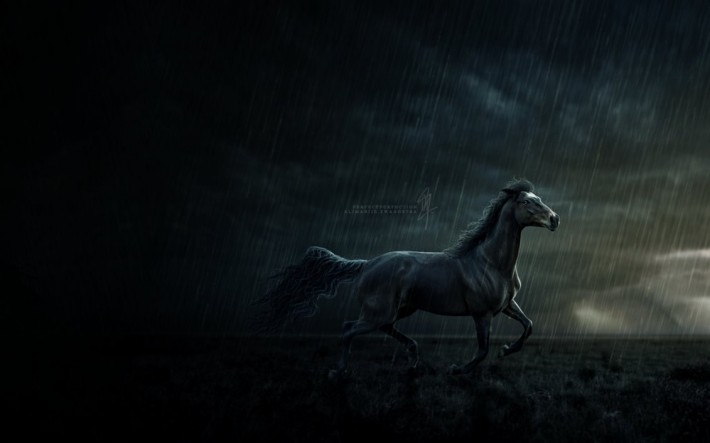 Black horse running wallpaper