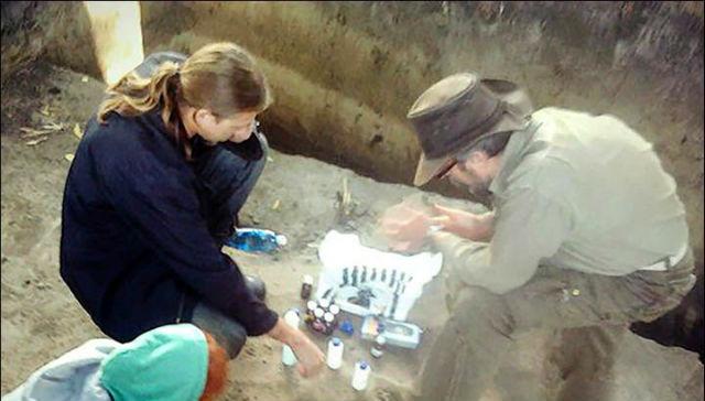 Броня из костей обнаружена на берегу Иртыша_6