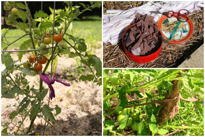 Как использовать старые колготки для дома и огорода?