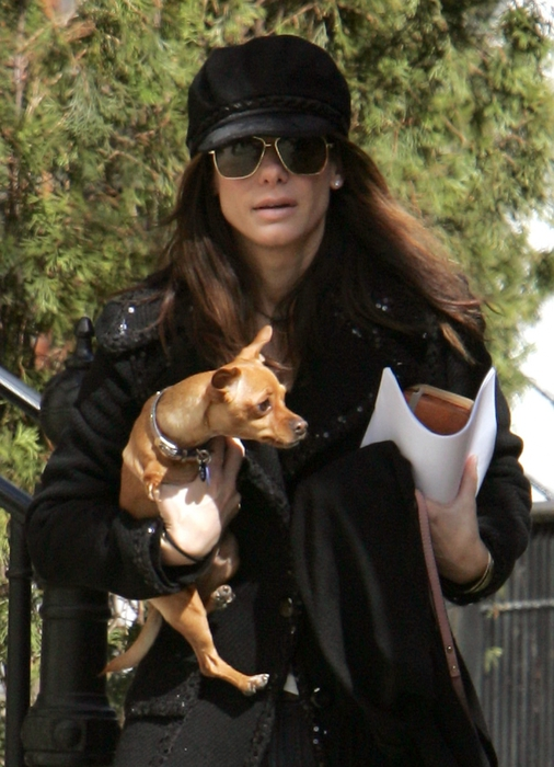 3455057_sandra_bullock_with_her_dogs_leaving_her_townhouse_in_soho02_122_538lo (506x700, 263Kb)