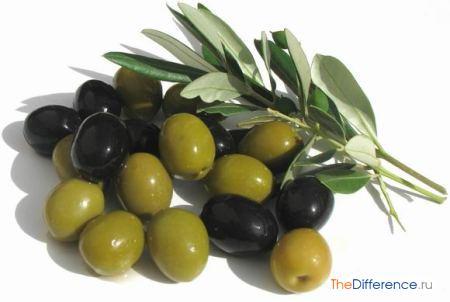 Почему надо есть оливки?