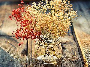 Сухоцвет | Ярмарка Мастеров - ручная работа, handmade