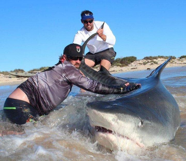 Опасная рыбалка