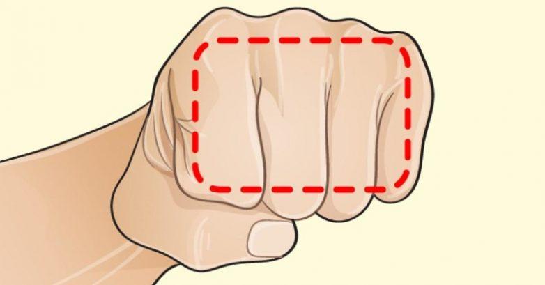 Диета «на пальцах», которая поможет сбросить вес всем желающим