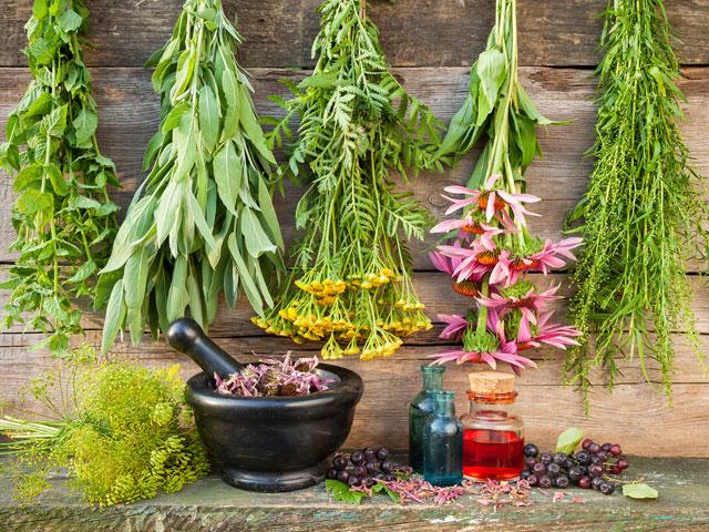Как правильно хранить лекарственные травы