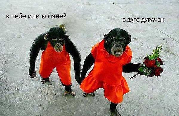 Я тебя добавлю в друзья ВКонтакте...
