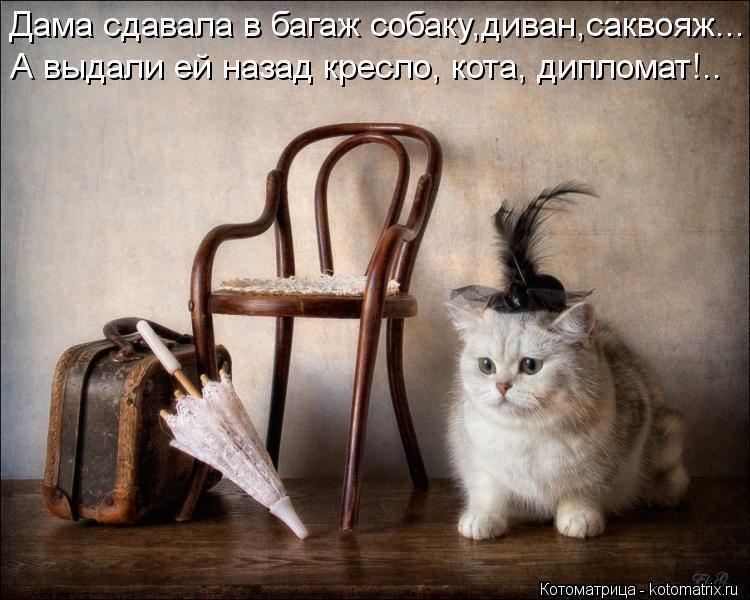 Котоматрица: Дама сдавала в багаж собаку,диван,саквояж... А выдали ей назад кресло, кота, дипломат!..