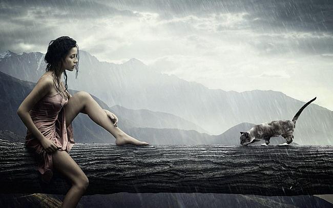 Девушка, rain, кошка, дождь обои на рабочий стол и картинки 50565