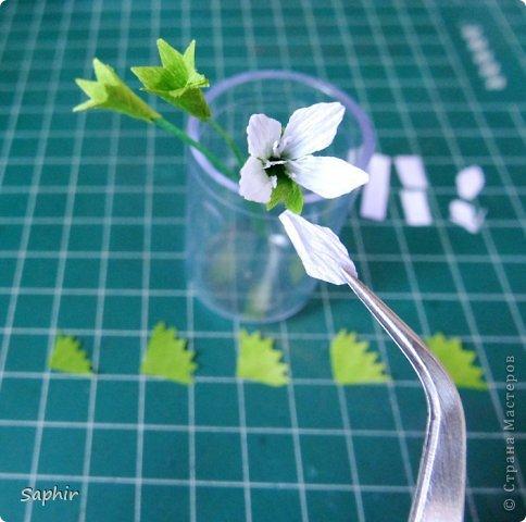 Мастер-класс Бумагопластика Маленькие цветочки из бумаги Кристал  Бумага гофрированная фото 9