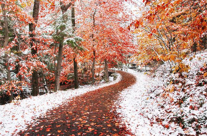 Между осенью и зимой! Нереальная красота!