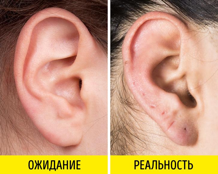12мифов про сережки вушах идругих частях тела (Даже несмотрите напистолет)