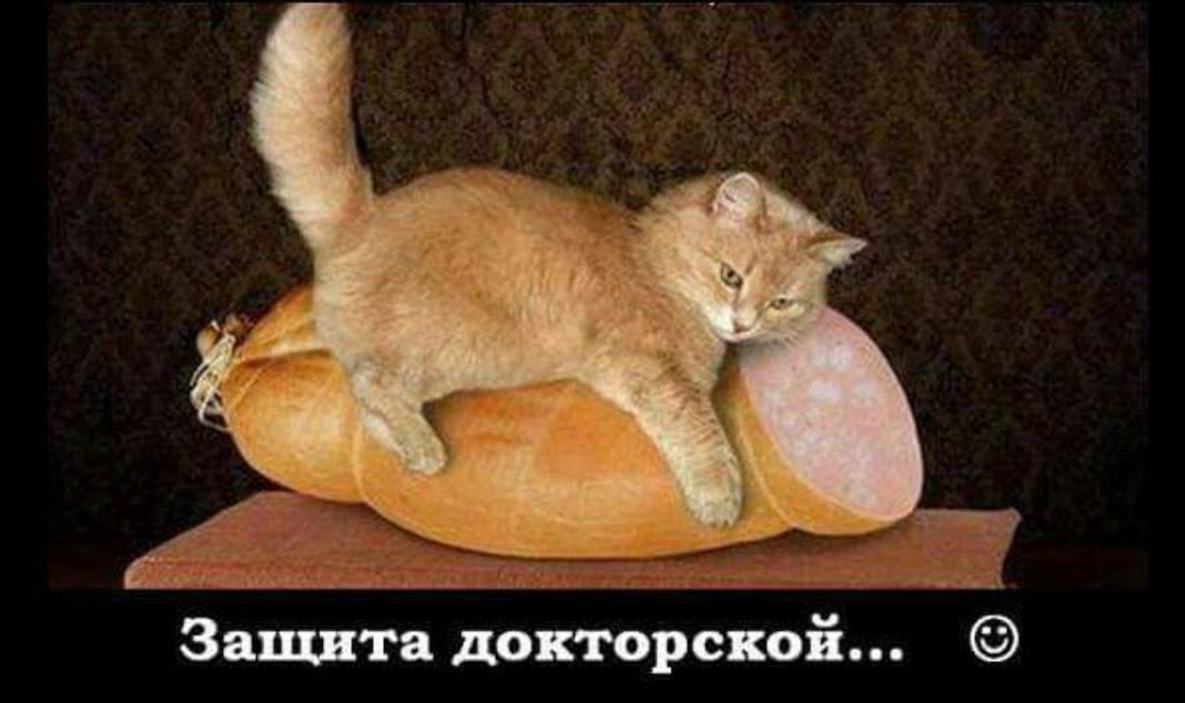 http://cdn.fishki.net/upload/post/201506/13/1564993/4_image.jpg
