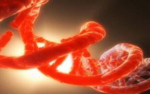 Нам угрожают генно-компьютерные инфекции