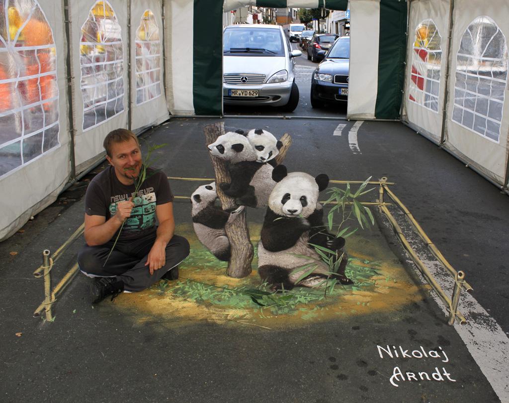 3d 3 Уличные 3D рисунки Николая Арндта