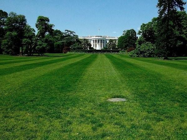 США: хаос в «Белом доме»