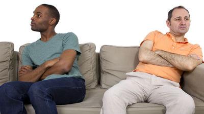 «Гомосексуальные товариществ…