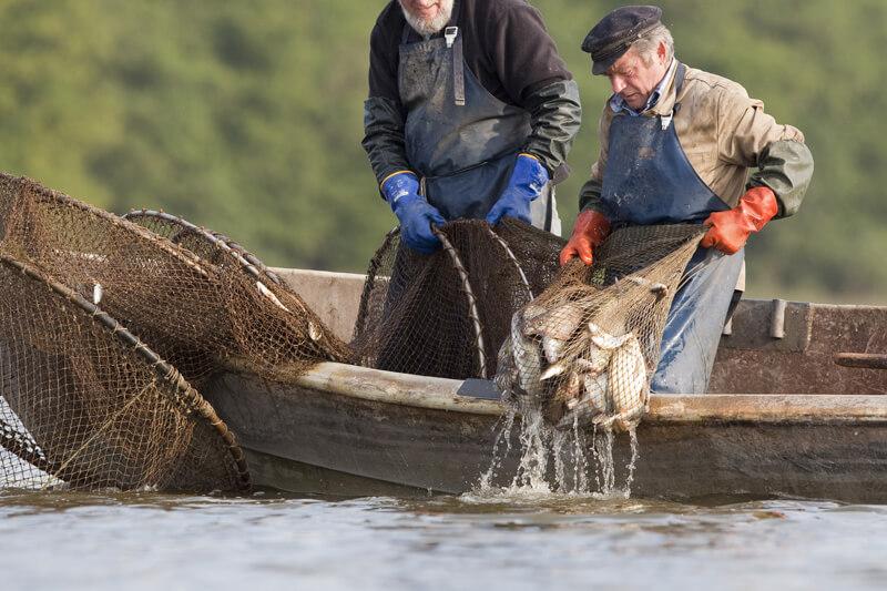 ловля рыбы весной вентерем