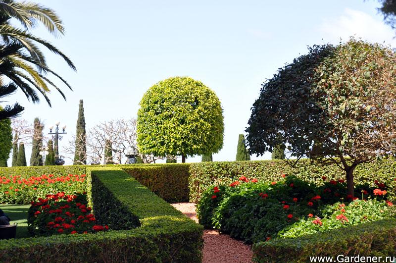 Бахайские сады- это сказочное по красоте место