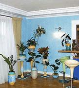 Уход за комнатными растениям