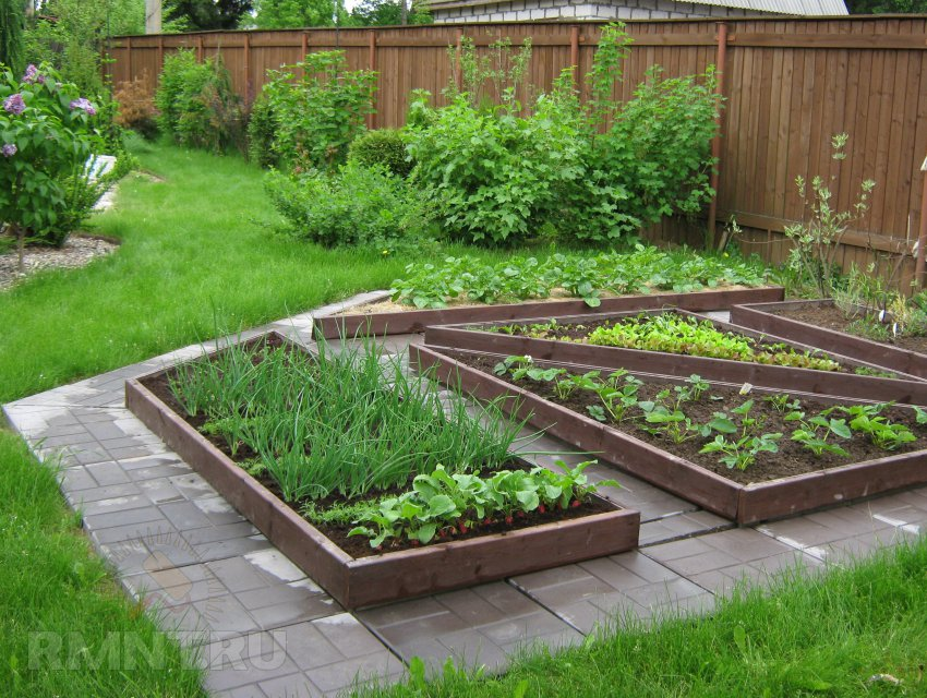 Фото сад огород своими руками