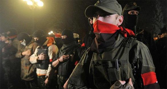 Польский подполковник предупреждает: фашисты - у наших границ